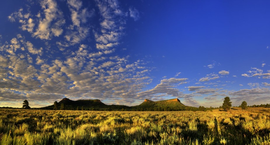 Bears_Ears_Pano_Sunrise_crop_(c)_Tim_Peterson