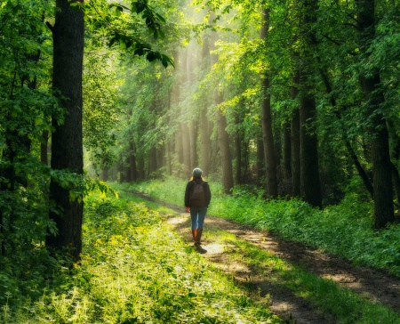 spring forest. woman in a picturesque forest. beautiful sun rays