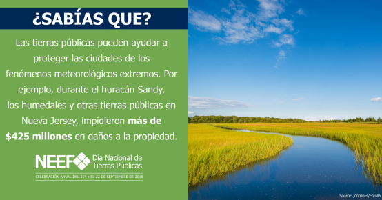 SOCMED18-NPLD-FunFacts-WetlandsDisasterRelief-Spanish-2540x1334