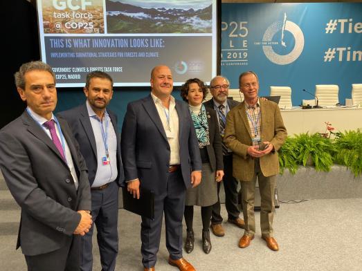 ParticipantesGCF_COP25